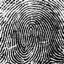 new-hire-fingerprinting
